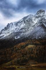 Together (Alessio Bertolone) Tags: vigolana winter autumn snow trees alessiobertolone colours nikond7000 trentino italy it landscape drama