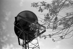 Vista del cielo (mavricich) Tags: monocromo monocromático película pentax spotmatic kodak film foma rodinal
