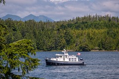 Ucluelet Scenery (MIKOFOX ⌘ Thanks 4 Your Faves!) Tags: canada channel britishcolumbia boat xt2 water ocean vancouverisland learnfromexif july forest landscape provia mountains fujifilmxt2 mikofox showyourexif summer xf18135mmf3556rlmoiswr