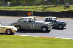 All cars great or small (Steve M Photography) Tags: brandshatch motorracing historic motorsport britishmotorsport jaguar panning cars sportscar vintage autosport racing rare
