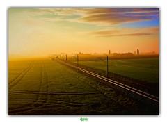 (régisa) Tags: westvlaanderen flandre occidentale vlaanderen belgique belgië rail paysage sunrise soleil lever matin morning brume mist champ field loscil