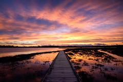 Above Us The Waves (ajecaldwell11) Tags: redsky ahuririestuary sunset ankh water westshore clouds pandorapond tide newzealand napier ahuriri boardwalk sky reflection hawkesbay caldwell dusk light