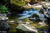 The flow (Felicis_Flower) Tags: waterfall wasser water wasserfall ravennaschlucht schwarzwald blackforest forest wald fluss river