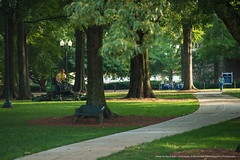 Week in Photos - 08 (Ole Miss - University of Mississippi) Tags: 2018 skb3356 grove landscape landscaping mow mower