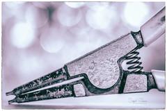 In Used Condition (Inky-NL) Tags: borgveertang circlippliers handtool handgereedschap gereedschap tool pliers tang ingridsiemons©2018 bokeh postprocessed monochrome surface used old wornout versleten knipex knipexgermany macromondays hmm mm