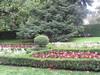 Flowerbeds, Paseo del Prado, Madrid. (d.kevan) Tags: parksandgardens madrid spain centralmadrid paseodelprado plants trees flowers 1570 hedges flowerbeds begonias