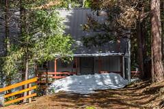 Cold Obstacle (davidseibold) Tags: america cabin california campnelson jfflickr photosbydavid plant postedonflickr snow tree tularecounty unitedstates usa springville
