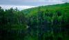 a small pond in maine (jtr27) Tags: dscf9134xl jtr27 fuji fujifilm xe2s xe2 xtrans vivitar komine 55mm f28 macro manualfocus pond landscape birch tree reflection maine newengland camping hike hiking whitemountains