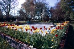 Shiseki park (threepinner) Tags: uryu hokkaidou hokkaido northernjapan japan mamiya universal press sekor 50mm f63 positive selfdeveloped 雨竜町 北海道 史跡公園 北日本 日本