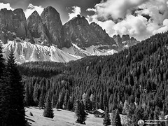 CF005834bncrw HASSELBLAD 500 CM + PHASE ONE P45 (Abboretti Massimiliano-Mountain,Street and Nature ) Tags: abboretti alps dolomiti dolomites hasselbald500cm hasselblad mountain valdifunes phaseone p45 zeiss zeisslens mediumformat bw bn mountainphotographer mountains altoadige sudtirol italy funes unesco