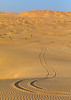 Sand car tire tracks in the rub al khali desert, Dhofar Governorate, Rub al Khali, Oman (Eric Lafforgue) Tags: adventure arabia arabianpeninsula colorimage desert dhofar dry emptyquarter environment erg gulfcountries idyllic landscape leisureactivity majestic nature nopeople nonurbanscene oman oman18232 outdoors rubalkhali sand sanddesert sanddune scenics sun temperature tourism tranquilscene tranquility transportation travel traveldestinations tyre tyretrack vertical wilderness dhofargovernorate om