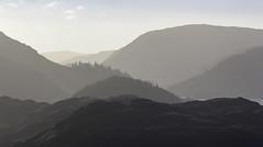 South from Blease Fell (Blencathra), Lake District National Park, Cumbria, UK (Ministry) Tags: steelfell lakedistrict nationalpark cumbria uk greathow highrigg bleasefell blencathra thirlmere helmcrag lakeland roughcrag highparkwood brownhow dowbank gummershow birkcrag haze layer aerialperspective fell tree hill