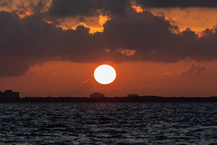 Sun Going Down 1 (Photomatt28) Tags: florida natureparks picnicisland sunset tampa