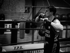 28859 - Winner (Diego Rosato) Tags: winner vincitore vittoria victory pugile boxer pugilato boxe boxing boxelatina ring match incontro nikon d700 2470mm tamron rawtherapee