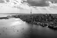 The Dark City (Michael Muraz) Tags: 2018 bw blackwhite canada northamerica ontario toronto world aerial aerialphotography lake lakeontario monochrome plane skyline ca
