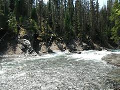 Pretty Falls ... (Mr. Happy Face - Peace :)) Tags: sheepriver canada alberta yyc wilderness