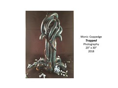 """Trapped • <a style=""""font-size:0.8em;"""" href=""""https://www.flickr.com/photos/124378531@N04/42646140841/"""" target=""""_blank"""">View on Flickr</a>"""