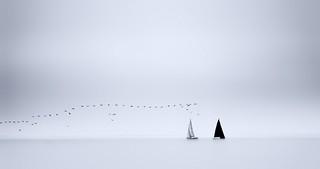 Secret Sailing