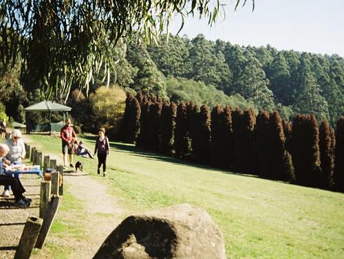 RJ Hamer Arboretum (photo 5) by Matthew Paul Argall, on Flickr