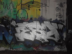505 (en-ri) Tags: esy nero argento arrow parco dora torino wall muro graffiti writing