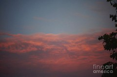 Terrifying red sunset (Aliceheartphoto) Tags: ohio sky clouds sunset red tree nature fineartamerica faa pixelsartist pixels friendsonfaa fineartamericaartist scary horror gothic