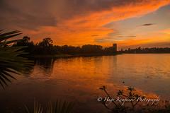 Sunset at Inya Lake Hotel in Yangon, Myanmar. (KyotoDreamTrips) Tags: burma delonixregia inyalakehotel myanmar sundaybrunch yangon dining flametree sunset yangonregion myanmarburma mm