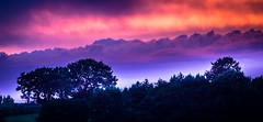 traumhaft (Beppe Rijs) Tags: horizon landscape blue hour silhouette sky zoom tree deutschland germany schleswigholstein schlei wolken wolkendecke landschaft natur nature field feld horizont clouds farbig colored line linie rural ländlich color farbe sun sundown schleswig fjord sunset sonnenuntergang violett surreal