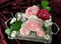 Delicate rose antiche (Melisenda2010) Tags: flora naturamorta stilllife rose giugno coth coth5