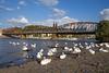 CD 362 126 + R 754 Praha hl n - Plzen hl n  - Praha (Rene_Potsdam) Tags: ceske drahy skoda praha prag praag prague railroad swan