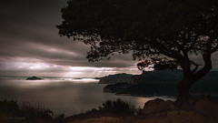 Cassis bay (Studio Hors-champ) Tags: tree sea mediterranean view sky storm reflect sunset manosque