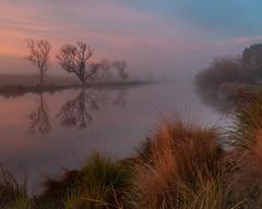 South Esk reflection (Rich Morrison) Tags: south esk river evandale launceston tasmania australia landscape sunrise d5000 nikon samyang mist