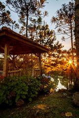 Landscape (1) (Sun Hunters) Tags: gazebo garden lake sundown sunset rayoflight sun sunlight