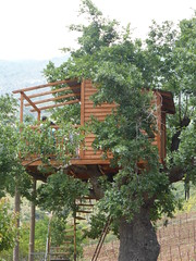 Δενδρόσπιτο!!  P1050068 (amalia_mar) Tags: housetree tree wooden green country 7dwf crazytuesdaytheme uprightformat fteri achaia greece smile