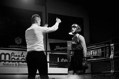 28435 - Count (Diego Rosato) Tags: count conteggio arbitro referee ring match incontro boxe boxing pugilato boxelatina bianconero blackwhite nikon d700 2470mm rawtherapee tamron