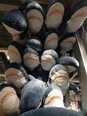BLÅHAJ (stevenbrandist) Tags: ikea store cuddlytoy shark shopping blåhaj nottingham giltbrook