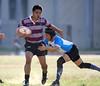 20180602376 (pingsen) Tags: 台中 橄欖球 rugby 逢甲大學 橄欖球隊 ob ob賽 逢甲大學橄欖球隊