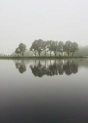 Misty and grey day. (elsa11) Tags: summer may june misty mist lake noordholland nederland trees bomen explore