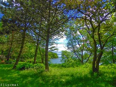 Beautiful Day In The Neighbourhood (flipkeat) Tags: landscape nature landscapes canadian ontario beautiful awesome scenic brueckner rhododendron gardens natural beauty mississauga outdoors