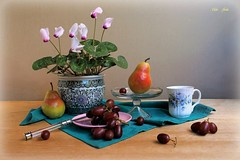 A Welcome Home (Esther Spektor - Thanks for 12+millions views..) Tags: stilllife naturemorte bodegon naturezamorta stilleben naturamorta composition creativephotography tabletop spring fruit pear grape cluster plant flowers cyclamen pot cup plate stand napkin glasss ceramics linen pattern knife white pink green red teal burgundy blue estherspektor canon