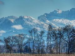 Mountains and trees (sander_sloots) Tags: mountains trees bergen bomen uster snow sneeuw alpen alps landscape landschap swiss niederuster