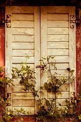 Altes Haus ([-ChristiaN-]) Tags: fenster window fensterladen haus alt vintage romantisch romantic wild wallpaper