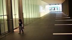 SAKIKO - White line. (MIKI Yoshihito. (#mikiyoshihito)) Tags: sakiko 咲子 さきこ サキコ daughter 次女 2歳5ヶ月