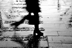 Walking (jaume zamorano) Tags: blackandwhite blancoynegro blackwhite blackandwhitephotography blackandwhitephoto bw catalunya d5500 ground gente lleida monochrome monocromo nikon noiretblanc nikonistas pov pluja lluvia rain pluie street streetphotography streetphoto streetphotoblackandwhite streetphotograph urban urbana 7dwf