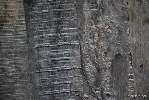 Фактура Старе дерево InterNetri Ukraine 0032
