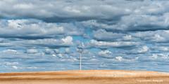 Loneliness (Ignacio Ferre) Tags: segovia comunidaddecastillayleón españa spain paisaje landscape cielo sky nube cloud nikon campo field land páramo tendidoeléctrico nublado cloudy loneliness soledad