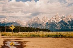 Grand Teton National Park (rsieber82) Tags: film analog portra400 35mm kodak nikon f3 f3hp travel outdoors rogersieber grandteton tetons jacksonhole wyoming
