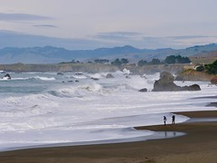 Two Men Fishing in Windy Conditions (Seymour Lu) Tags: fishing fisherman pole beach men windy wind waves tall unafraid scary weather california united states west coast coastal cold nature outdoors panasonic lumix gh5 mirrorless photography