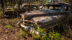 Southern Gothic (Wayne Stadler Photography) Tags: preserved overgrown retro vintage rustographer abandoned classic derelict cadillac vehiclesrust rusty rustography junkyard oldcarcity georgia automotive white
