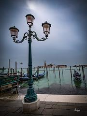 Venice PRJ10