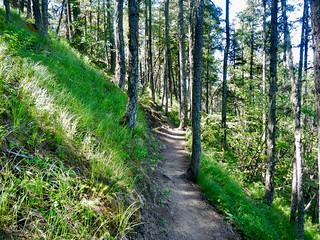 Enderby Cliffs 16